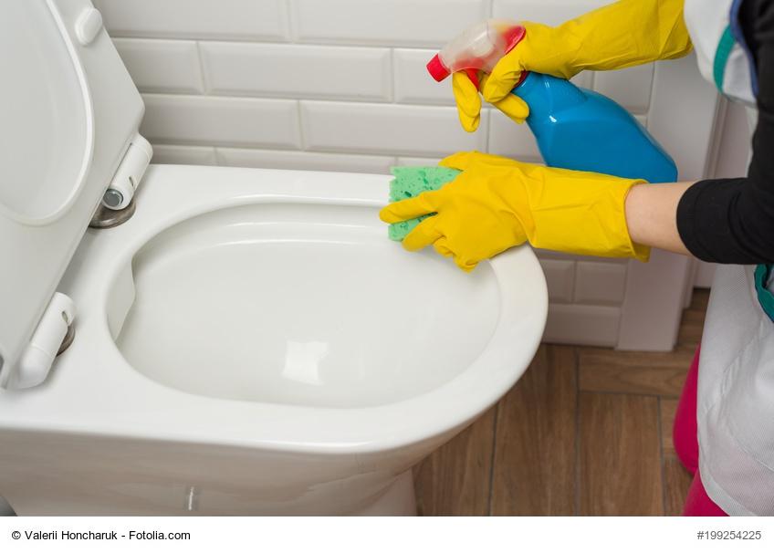 wc abflussrohr reinigen eine verstopfte toilette bekommst du mit hausmitteln wieder frei with. Black Bedroom Furniture Sets. Home Design Ideas